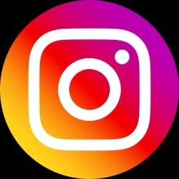 instagram_logo_color_icon256